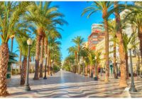 FLIGHTS, ACCOMMODATION AND MOVEMENT IN ALICANTE