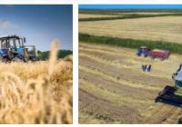 Kazakhstan Agriculture