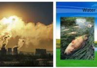 Kazakhstan Ecological Problems