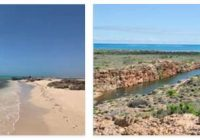 Ningaloo Coast (World Heritage)