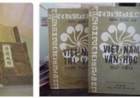 Vietnam Literature