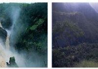 Wet Tropics National Park (World Heritage)